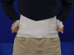 Scott Specialties Back Support - White (Large)