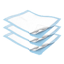 Durasorb Disposable Underpads - 23in. x 24in. (200/Case)